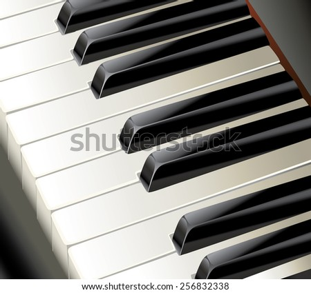 piano keys - stock vector