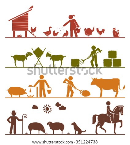 Pictogram icons presenting feeding of domestic animals on the farm. Feeding chickens and poultry, feeding goats with hay, feeding pigs and cattle, grazing sheep, riding horse. Agriculture icons. - stock vector