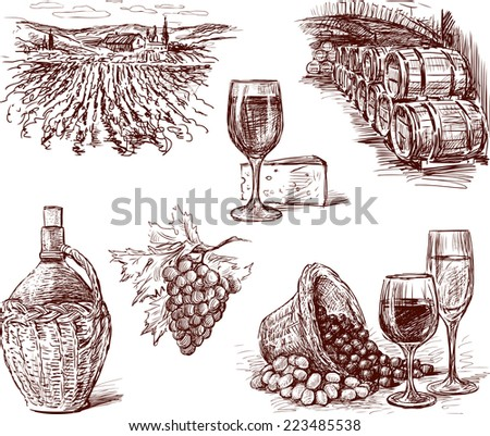 Pictures of the grape wine - stock vector