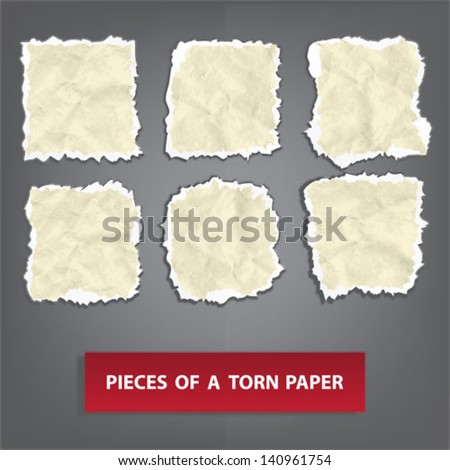 pieces of a torn paper - stock vector