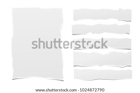 Pieces of torn white blank note, notebook paper strips for text