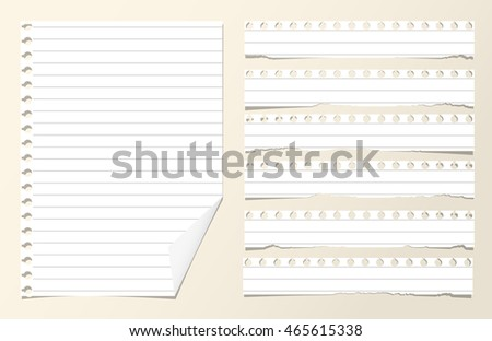 Pieces of white ruled blank notebook paper sheets