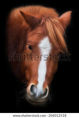 Piercing wisdom look back of grace red horse with white stripe on the face, isolated on black background. Beautiful mare, looking straight into the camera. Amazing vector image, in oil painting style. - stock vector