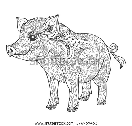 Pig Coloring Book Page For Adult In Doodle Style Animal Vector Illustration Tattoo