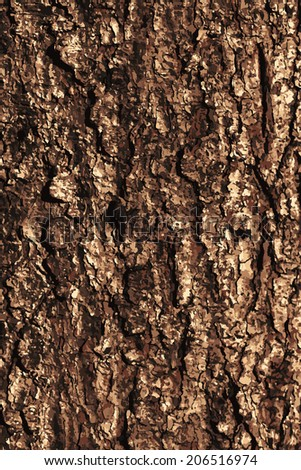 Pine bark texture pattern. EPS 10 vector illustration without transparency. - stock vector