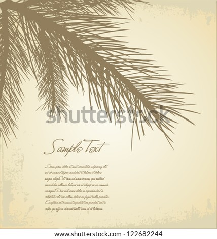 Pine branch background - stock vector