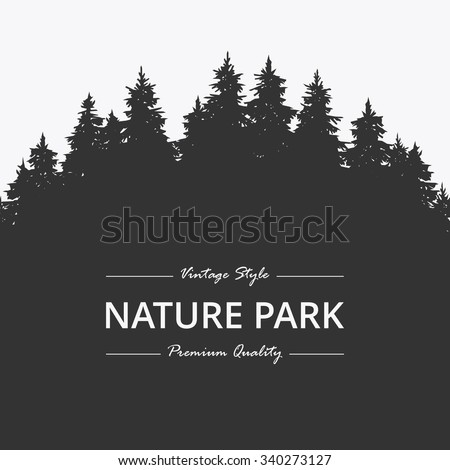 Pine forest. Nature park
