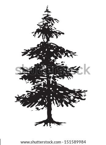 Pine tree - stock vector