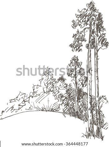 Forest Sketch Stock Images, Royalty-Free Images & Vectors ...