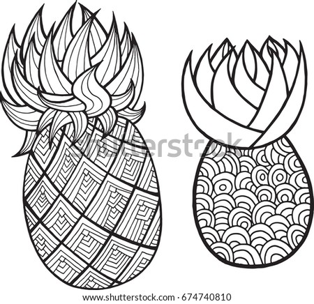 Pineapple And Ananas Coloring Page Graphic Vector Black White Art For Books