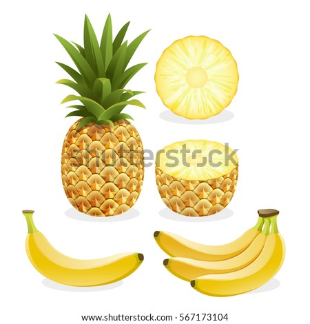 Pineapple and banana fruit. Vector illustration.