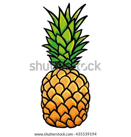 Pineapple illustration vector  - stock vector