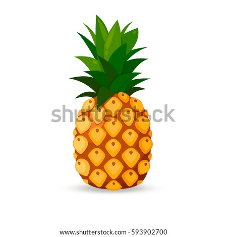 Pineapple isolated on white background. Vector image
