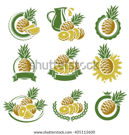 Pineapple labels and elements set. Vector - stock vector