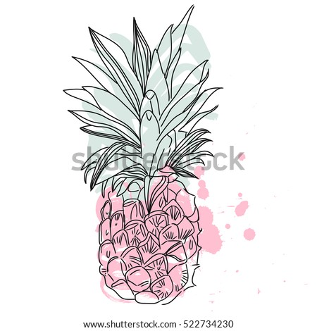 Pineapple tropical fruit. Vector object.