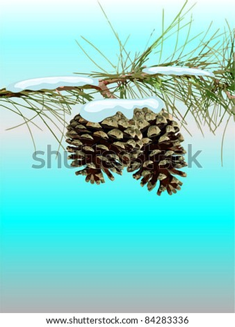 pinecone and pine branches with snow - vector illustration - stock vector