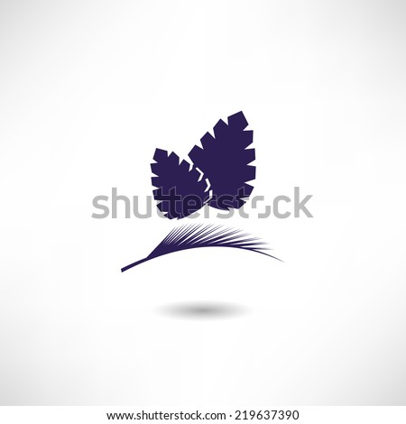 Pine-cone Stock Images, Royalty-Free Images & Vectors ...