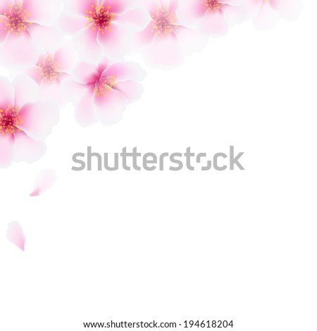 Pink Cherry Flowers Border, With Gradient Mesh, Vector Illustration - stock vector