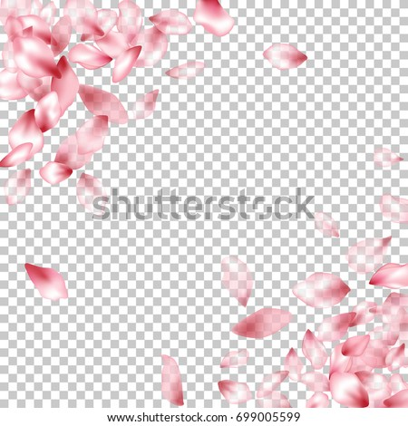 Pink Flower Petal Confetti Vector Corners Floral Isolated Border Pattern On Transparent Background Spring