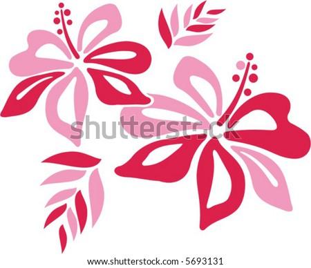 Hibiscus Clip Art Stock fotos, billeder til fri afbenyttelse og ...