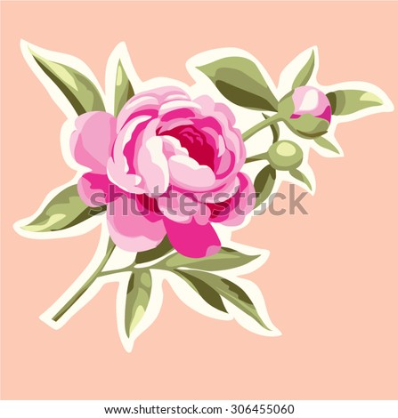 Pink peony. Decorative flowers - stock vector