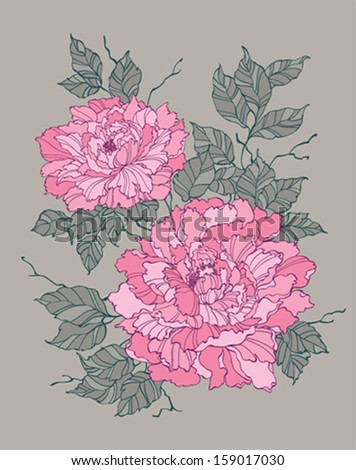 Pink peony on grey background - stock vector