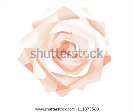 pink rose. Vector - stock vector