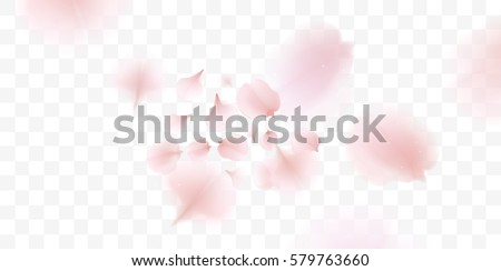 Pink sakura falling petals vector background. 3D romantic illustration