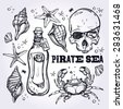 Pirate sea themed set. Beautiful pirate and marine life element collection.Tattoo, romance and adventure drawings. Vintage style. Hand drawn isolated vector illustration. - stock vector