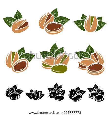 Pistachio nuts set. Vector  - stock vector