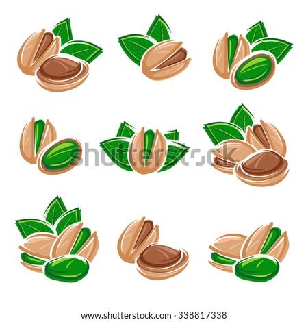 Pistachio nuts set. Vector - stock vector