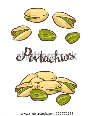 Pistachio nuts. Vector illustration.