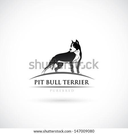 Pit bull terrier label - vector illustration - stock vector