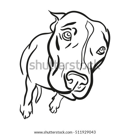 pitbull logo symbol simple illustration sport stock vector 2018 rh shutterstock com pitbull login pitbull look alike dogs