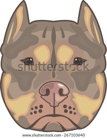 Pitbull vector - stock vector