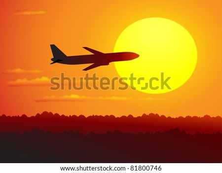 plane in the red sky - stock vector