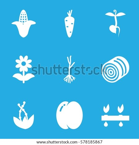 plant icon. Set of 9 plant filled icons such as hay, carrot, peach, corn, flower, sprout