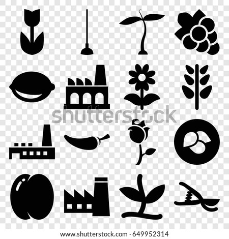 Plant icons set. set of 16 plant filled icons such as plant, leaf, peach, factory, grape, pepper, hoe, garden tools, flower, lemon