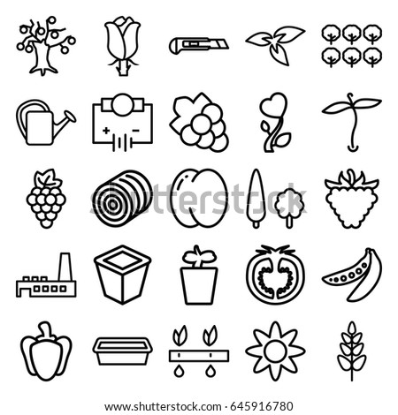 Plant icons set. set of 25 plant outline icons such as plant, hay, peach, grape, tree, grape, cutter, watering can, raspberry, rose, pepper, tomato, peas, heart flower