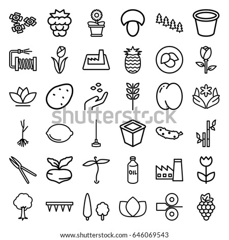 Plant icons set. set of 36 plant outline icons such as plant, leaf, mushroom, potato, peach, mulberry, grape, beet, rose, oil, hand with seeds, pine tree, factory, lotus