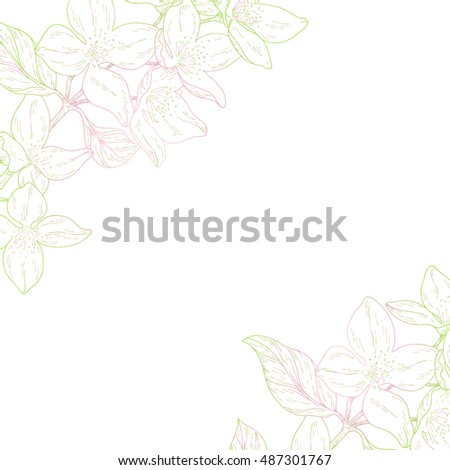 Plant in blossom, branch with flower ink sketch on white background. Vector illustration for your design