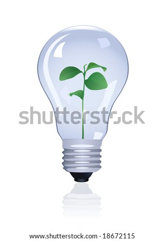 Plant in lamp. Vector illustration