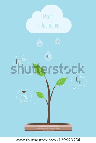 Plant Minimal Infographic. Vector illustration - stock vector