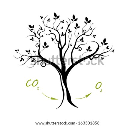 Plant Respiration - Oxygen Flow - stock vector