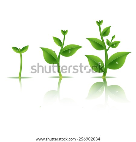Plant Set With Gradient Mesh, Vector Illustration - stock vector