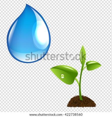 Plant With Water Drop, Isolated on Transparent Background, Vector Illustration - stock vector