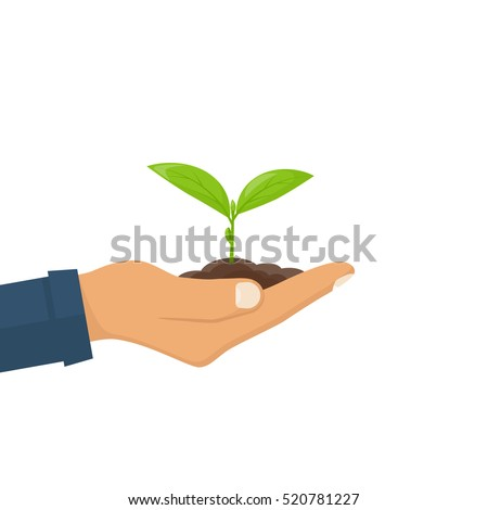 Planting sapling. Male farmer, gardener holding a green sprout in hand. Care and environmental development. Ecology concept. Vector illustration flat design. Isolated on white background.