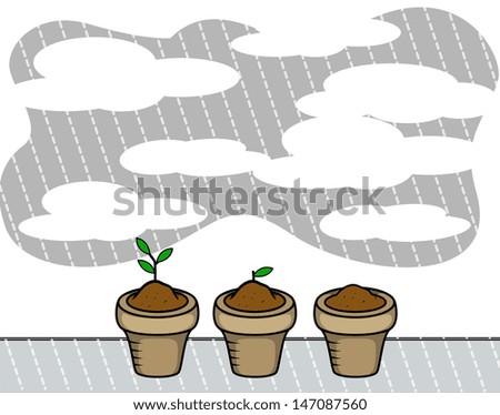 Plants Pots in Rain - Vector - stock vector