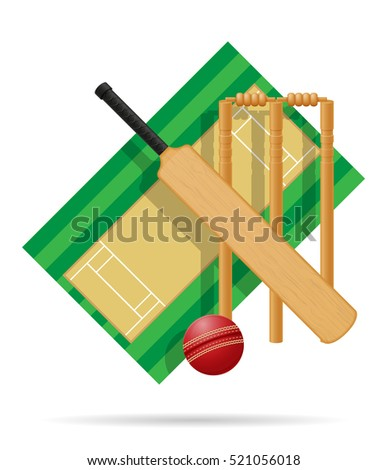 playground for cricket vector illustration isolated on white background