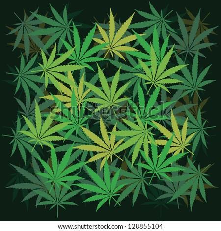 Plenty of cannabis leafs - illustration - stock vector
